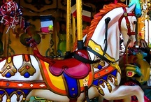 Carousel Animals / by Paula O'Hare