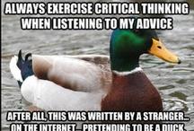 actual advice mallard!