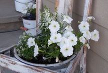Gardening  / simple gardening tips, easy DIY gardening inspiration, eco-friendly gardening ideas, gardening with repurposed and up-cycled items