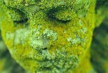 Green / #ineeden #gardenboutique my #favouritecolour