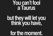 Taurus ⭐️