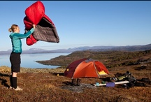 Let Us Go Camping! / by Rysha Deffenbaugh