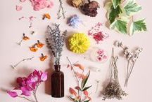D I Y  B E A U T Y / Creating non-toxic, inexpensive beauty items and finding artisanal apothecary products...for me and those I love!