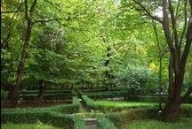The Gardens of Italy / The Gardens of Italy - Bed and Breakfast in Italy BedandBreakfastMania / by bedbreakfast