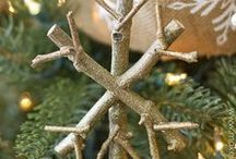 Christmas Decorations using Nature / Ornaments and decorations for your home inspired by nature. / by Kathy Skaggs