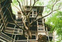 Green Homes / From Tree houses to apartment gardens. Homes that integrate with nature.