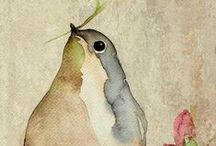 Birds. / by Emily Threlkeld