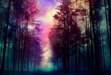 Magical / by Karina Werner