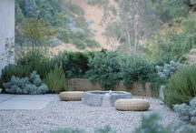 Landscaping / Keywords: drought tolerant; easy to maintain; kid-friendly; orderly but organic in design and shape; australian natives; flowers (depending on Shane's allergies); colourful; different textures; different heights; succulents; cacti; bouganvillea; strelitzia; rocks; slabs; pebbles; gravel