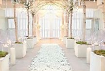 White Wedding / If you want your wedding to be a traditional white wedding.. you'll love this! Here are some simple ideas for your theme, invitations, flowers, cake, reception and more - not forgetting the all-important wedding dress!