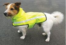 October 2013 Competition! / Win our Reflective Range to keep your dogs safe this winter.