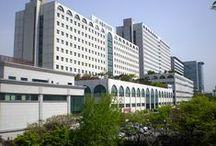 Hopspital
