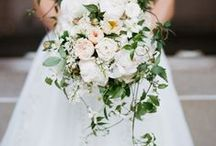 Bridal Bouquets / by Snippet & Ink