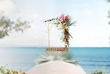 Alter, Aisle and Ceremony / There are so many wonderful and inspiring ideas now for the ceremony location.. It can be as simple as a sprinkle of rose petals or grand and breath-taking... Hope you enjoy this wonderful collection.