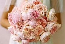 Bride Bouquet Inspiration