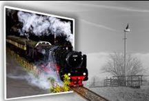 Mijn foto's / Diverse foto's van o.a. fotoshoots met fotoLifeView