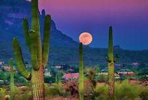 Arizona! / My favorite state