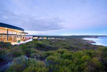 South Australia Luxury / Luxurious experiences around South Australia- accommodation, food & wine