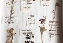 Herblings