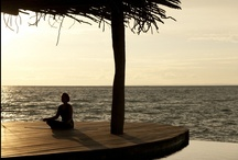 Sanctuaries & Wellness / The Song Saa Sanctuaries are places of calm, spirituality and renewal.