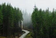 Doğa ve Diğer