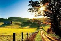 Beautiful landscape  ️