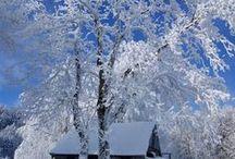 Winter landscape  ⛄️❄️