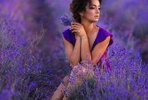Romantic Ideas   ●•✽•●