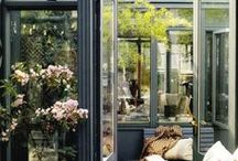 Orangerie / Citrus garden ideas, city sunroom, own greenery, tropical plants, glass home, conservatory, garden room, light chinoiserie, japanese garden at home, l`orangerie. Interior courtyard. Winter garden.