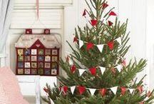 real xmas tree/karácsonyfák