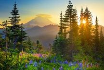 Northwest US