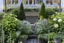 Small Gardens / Inspiration, ideas and tips for creating your perfect small garden.