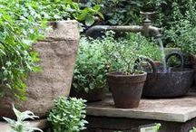Garden water features / Tips and inspiration for using water architecturally in your outdoor space.