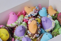 easter / by Kimberly Shah