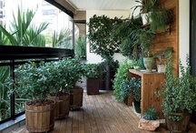 I would like to grow food here / A reader's digest of places to grow food throughout NYC and other cities / by agrowculture