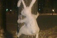 Ice & Snow Sculptures / Natural and human sculpted figures and shapes  / by Lennie Barnes