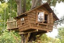 Treehouses / by Daisy Johnsen