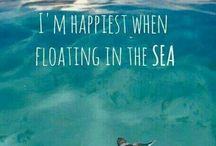 I'm all at sea...