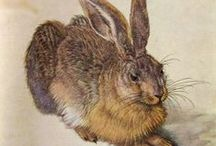Medieval hares and bunnies