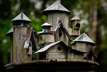 Birdhouses / by Deborah Scott