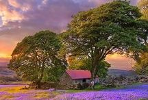 """NATURE DDS / """"Nature gives to every time and season some beauties of its own."""" - Charles Dickens"""
