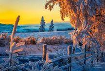 SNOW,SNOW,SNOW DDS / Places to visit!