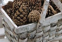 BAMBOO,RUSH,WICKER...DDS / Places to visit!