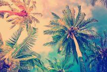 ¢σσℓ ρι¢тυяєѕ ✰ / Post any cool pictures you like :P If you want to join, just comment :D Invite anyone, and HAPPY PINNING!!