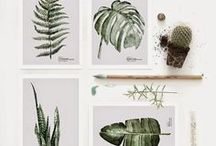 Plants LOVE