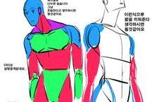 Reference : Stylized Anatomy