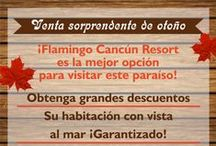 Aprovecha nuestras promociones  / Reserva hoy tus vacaciones en Hotel Flamingo Cancún y aprovecha nuestras promociones en reservaciones anticipadas / by Flamingo Cancun Resort