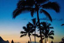 Vacation / Hawaii / by Sarah Gilson-Dupree