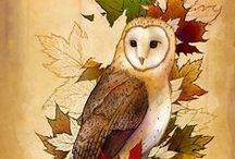 Owls / One of my absolute favorite living things and illustration subjects.