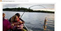 Fishing Tips / Fishing Tips